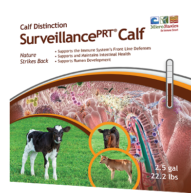 Image of the Survillance calf label